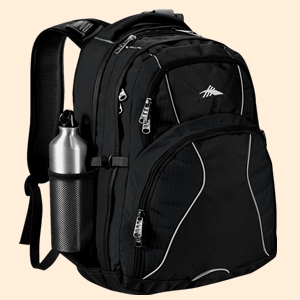 High Sierra 8050 37 Swerve 17 inch Computer Backpack from NYFifth