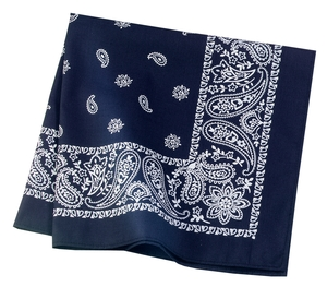 click to view Navy Paisley