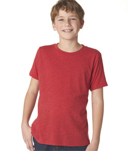 Next Level N6310 - Boy's Tri-Blend Crew