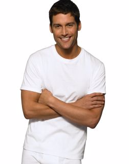 Hanes 7870W6 - Classic Mens White Crew Neck T-Shirt ...