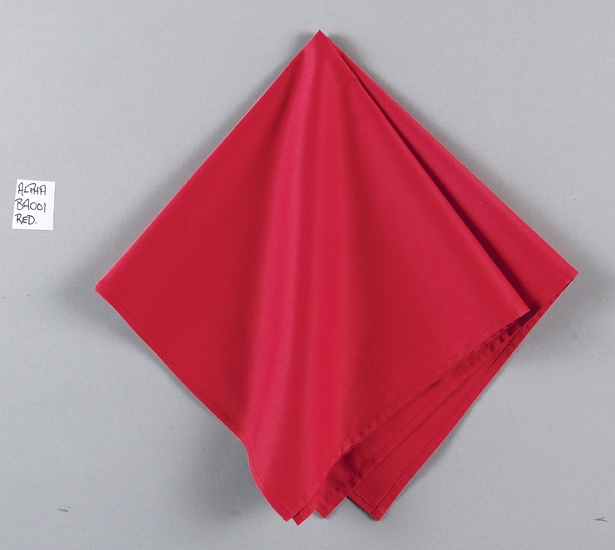 Big Accessories BA001  Solid Color Bandana
