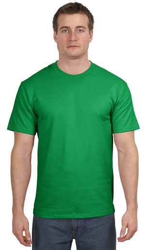 Hanes® 5250 Tagless® 100% Cotton T-Shirt