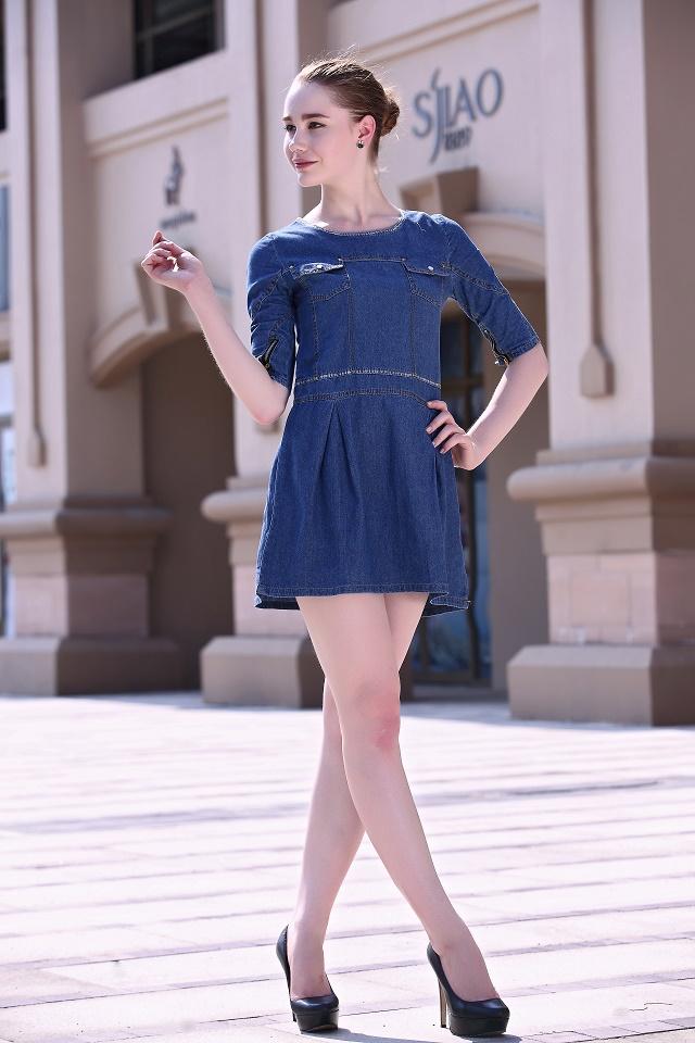 Denim Dress for women Fashion Back zipper Double pocket ...